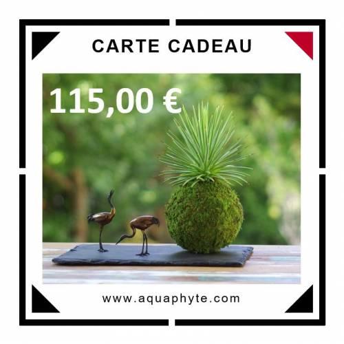 Carte Cadeau Aquaphyte 115 euros