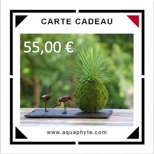 Carte Cadeau Aquaphyte 55 euros